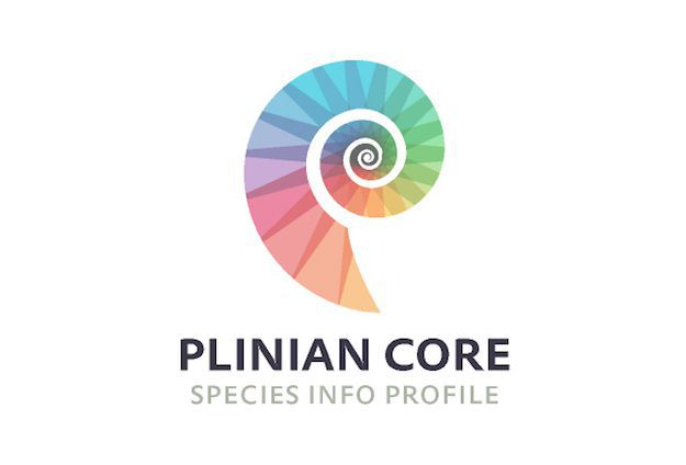 Plinian Core a reference at the National level